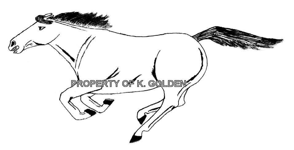 running horse hand drawn